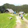 Planinski tabor Planina pri Jezeru 2014